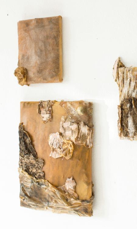 Skin Paintings Wall